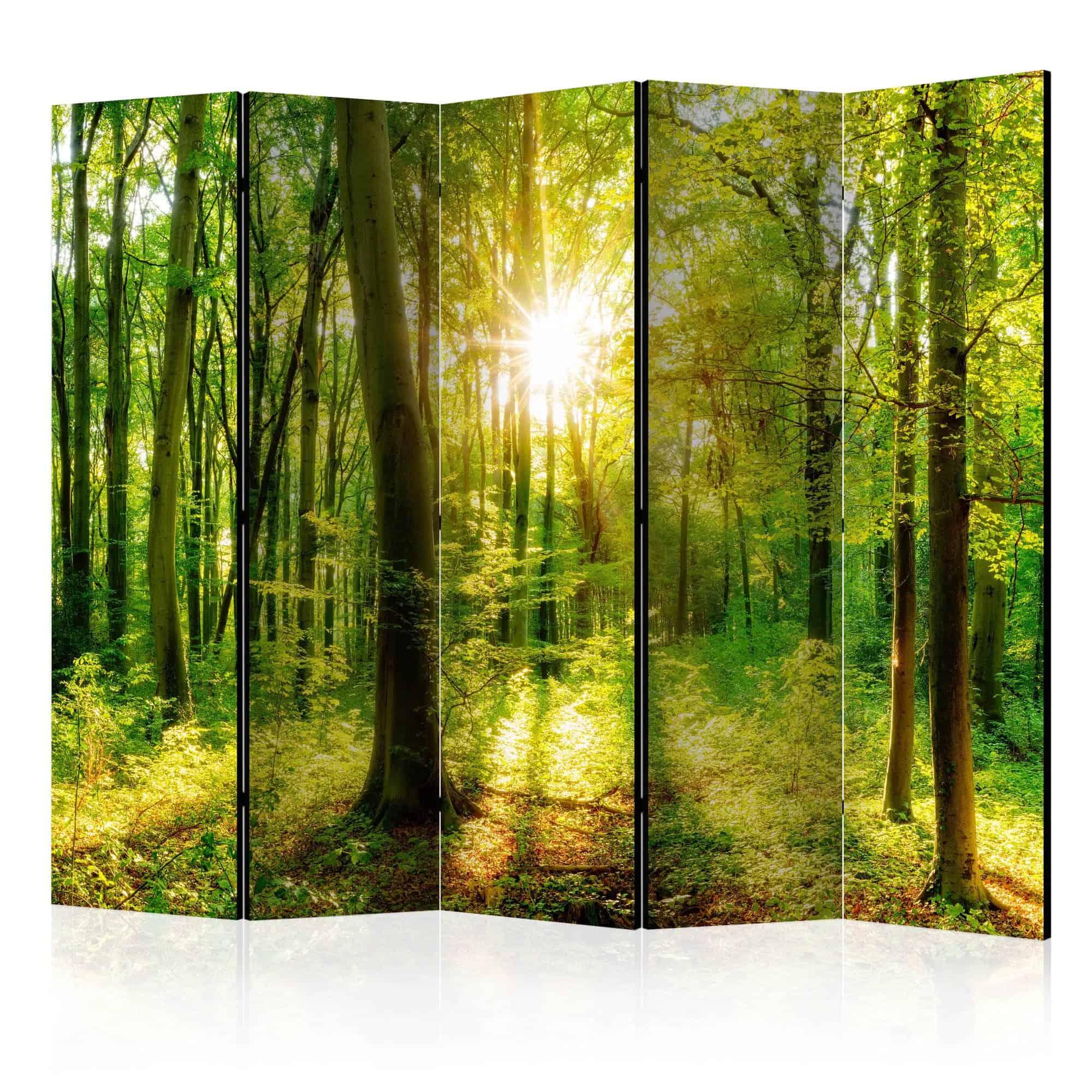 Skærmvæg Forest Rays II