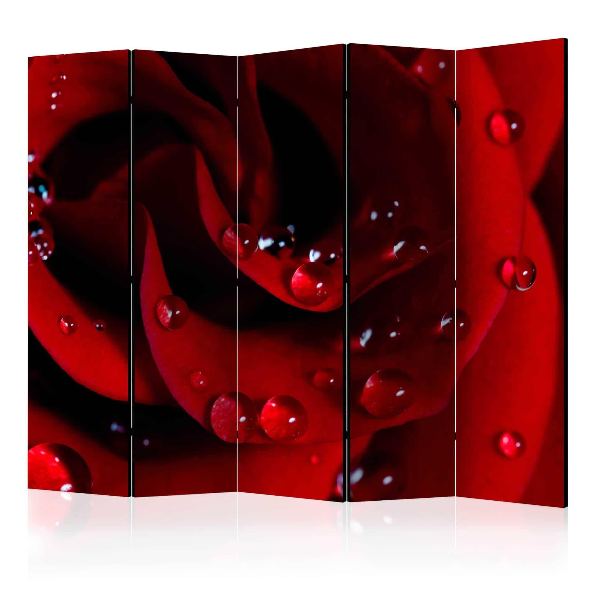 Skærmvæg Red rose with water drops II
