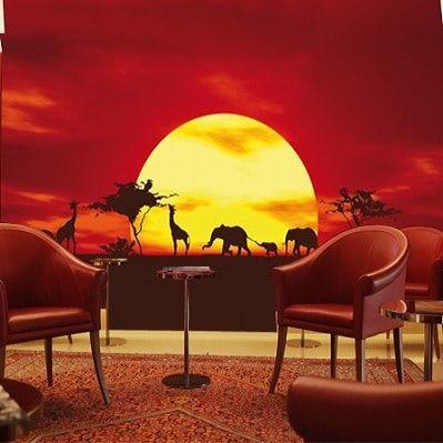 Afrikas savanne ved solnedgang - Foto tapet - Foto stat