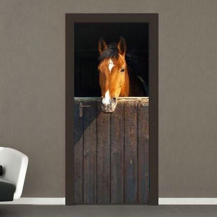 Hest Fototapet - Fotostat fra NiceWall.dk