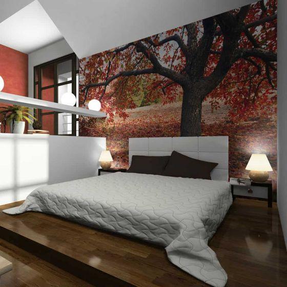 Træ i efteråret fotostat - flot foto tapet til væggen