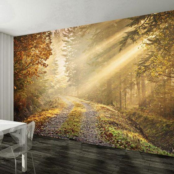 Efterårsskov fotostat - NiceWall.dk