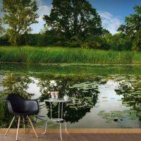 The Magic Pond fotostat - flot foto tapet til væggen