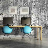 Flot birkeskov i sort/hvid fotostat - flot foto tapet til væggen