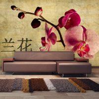 Japanese orchid fotostat - flot foto tapet til væggen