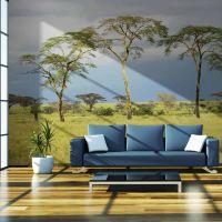 Savanna trees fotostat - flot foto tapet til væggen