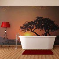 Afrika: solnedgang fotostat - flot foto tapet til væggen