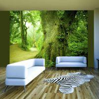 Sti gennem skoven fotostat - flot foto tapet til væggen