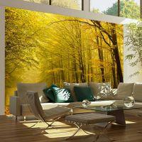 Vej gennem en skov klædt i efterårets farver fotostat - flot foto tapet til væggen