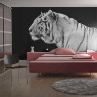 Hvid tiger fotostat - flot foto tapet til væggen