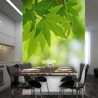 leaves (Shallow focus) fotostat - flot foto tapet til væggen