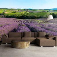 Lavendelmarker fotostat - flot foto tapet til væggen