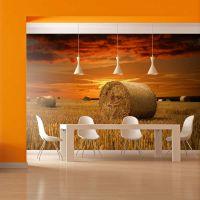 Kornmark i solnedgangen fotostat - flot foto tapet til væggen