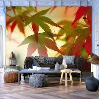 Farverige blade fotostat - flot foto tapet til væggen
