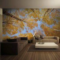 Efterårets trætoppe fotostat - flot foto tapet til væggen