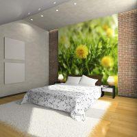 Mælkebøtte blomster fotostat - flot foto tapet til væggen
