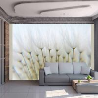 Skov af mælkebøtter fotostat - flot foto tapet til væggen