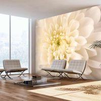 Hvid dahlia fotostat - flot foto tapet til væggen