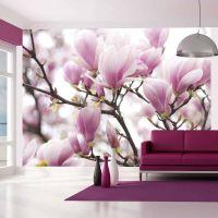 Magnolia bloosom fotostat - flot foto tapet til væggen