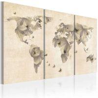 Verdenskort af sommerfugle - 3-delt canvas print - flot billede på lærred