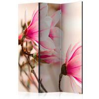 Branch of magnolia tree skærmvæg. Dekorativ flytbar skillevæg / rumdeler til hjem eller kontor.