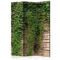Ivy wall skærmvæg. Dekorativ flytbar skillevæg / rumdeler til hjem eller kontor.