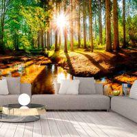Marvelous Forest fotostat - flot foto tapet til væggen