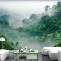 Morning Fog fotostat - flot foto tapet til væggen