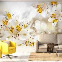 Sunny Alstroemeria fotostat - flot foto tapet til væggen