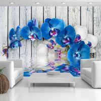 Cobaltic orchid fotostat - flot foto tapet til væggen