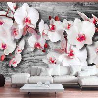 Callous orchids fotostat - flot foto tapet til væggen