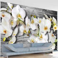 Callous orchids III fotostat - flot foto tapet til væggen