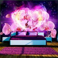 Orchids in flames fotostat - flot foto tapet til væggen