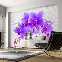 Violet excitation fotostat - flot foto tapet til væggen