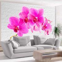 Pink excitation fotostat - flot foto tapet til væggen