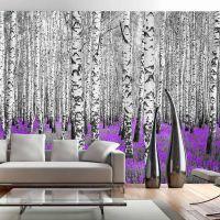 Purple asylum fotostat - flot foto tapet til væggen