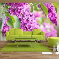 Lilac flowers fotostat - flot foto tapet til væggen