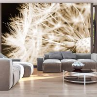 Dandelion - sepia fotostat - flot foto tapet til væggen