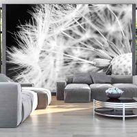 Black and white dandelion fotostat - flot foto tapet til væggen