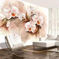 Pale yellow orchids fotostat - flot foto tapet til væggen