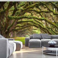 Tree embrace fotostat - flot foto tapet til væggen