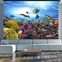Coral reef fotostat - flot foto tapet til væggen