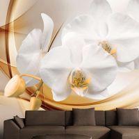 Orchid blossom fotostat - flot foto tapet til væggen