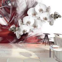 Orchid in red fotostat - flot foto tapet til væggen
