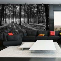 The Light in the Forest fotostat - flot foto tapet til væggen