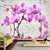 Purple Delight fotostat - flot foto tapet til væggen