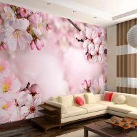 Spring Cherry Blossom fotostat - flot foto tapet til væggen