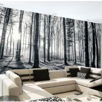 Skov sort hvid - Foto tapet - Foto stat