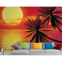 Solnedgang med palmer - Foto tapet - Foto stat